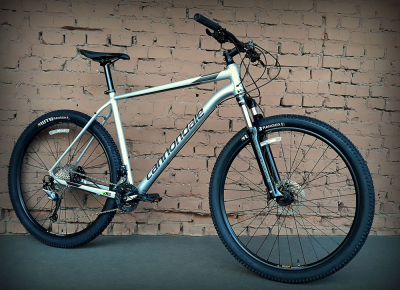 "Велосипед 29"" Cannondale Trail 6 SLV серебристый 2019"